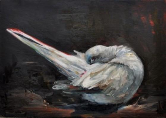 """Taube"" 2014, Lalena Moseler"